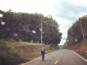 VIVA Bike ปั่นจักรยาน จังหวัดชลบุรี