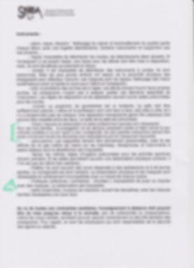 Directives SNEA 2 001.jpg