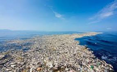 Great Pacific Garbage Patch Courtesy for