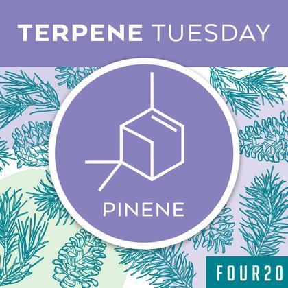 Terpene Tuesday