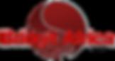 Bridgit Africa Logo.png