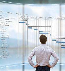 Project Management Professional (PMP) Ce