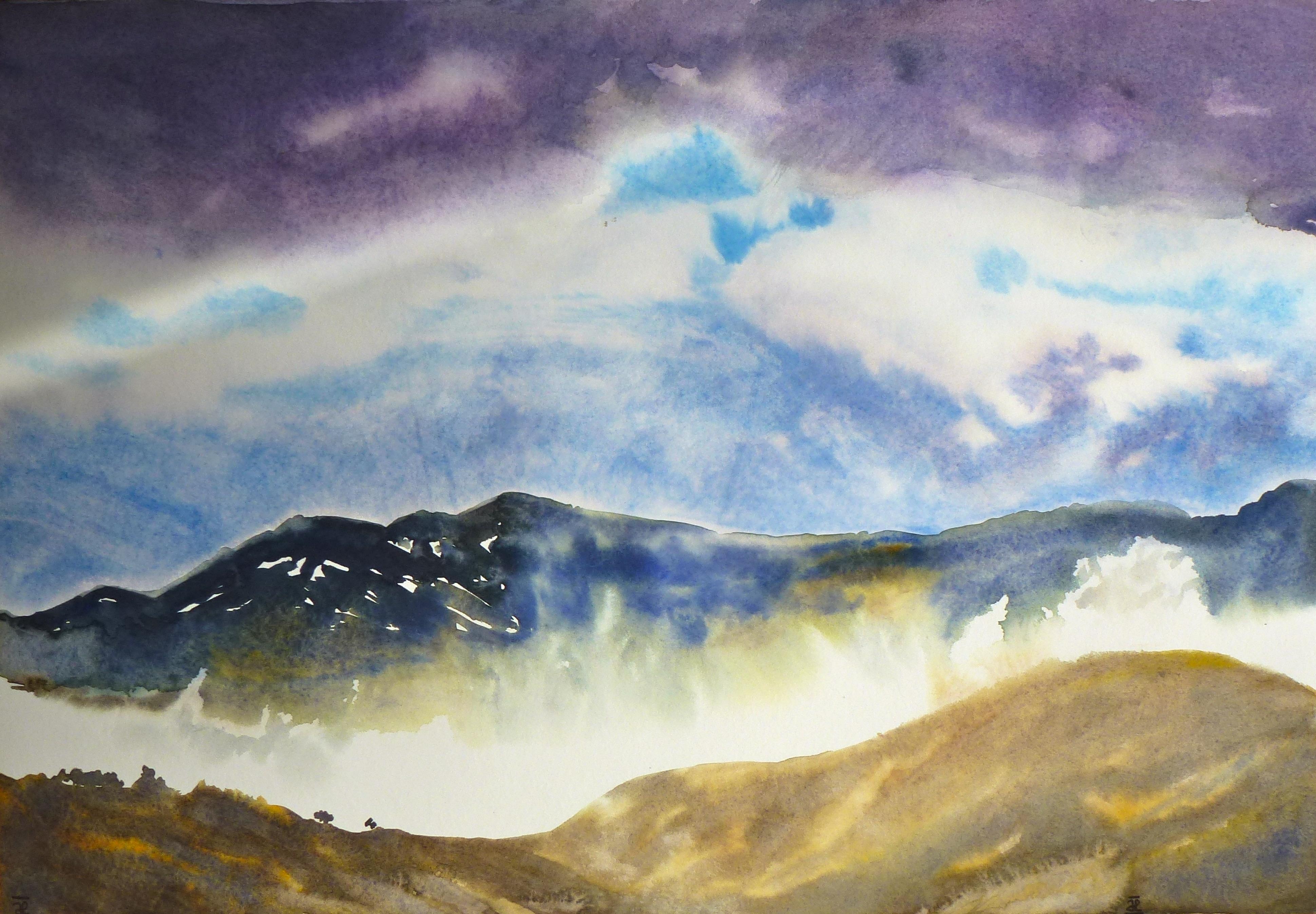 Violet versant II