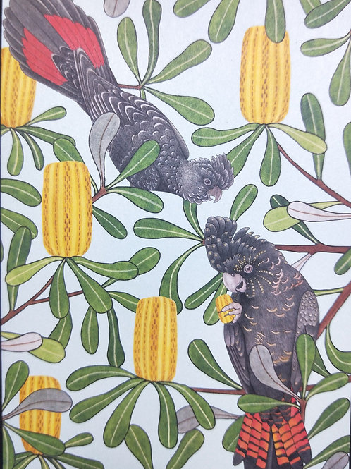 Banksia Banquet - Negan Maddock