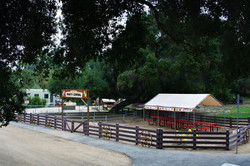 Party Corral