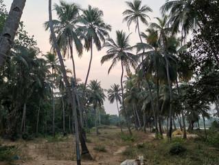 February 3rd - Rajalaxmi