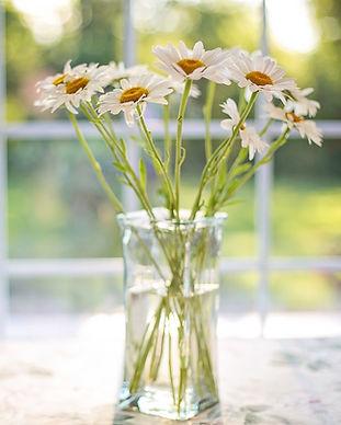 bloemen licht