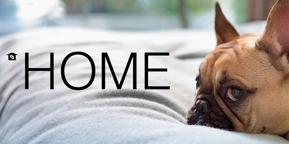 Coldwell Banker Homes for Dogs