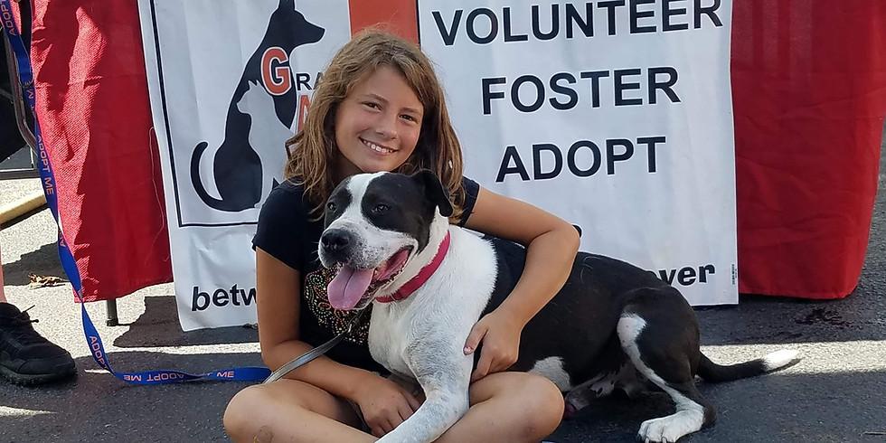 New Albany Pet Supplies Plus Dog Adoption Event