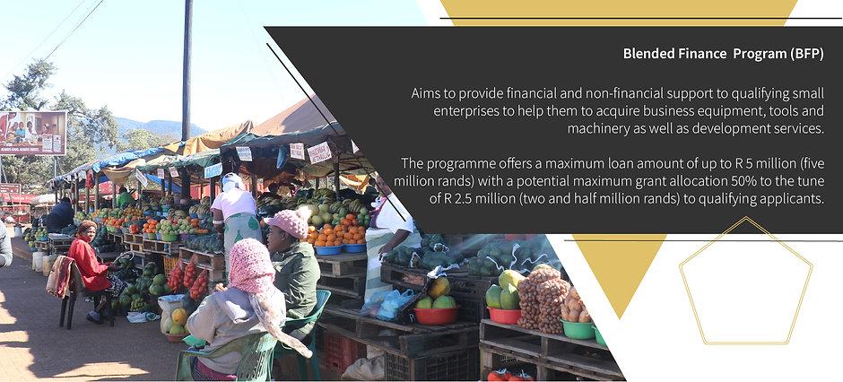 Blended Finance  Programme