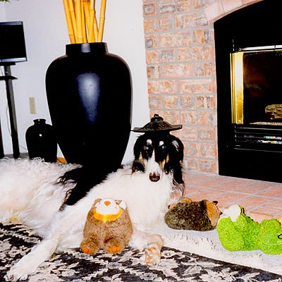 Trevor with his toys.