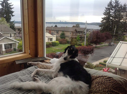 Niko with his view of the lake