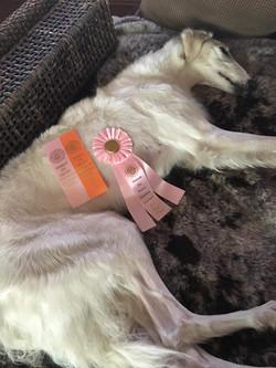 My ribbons!