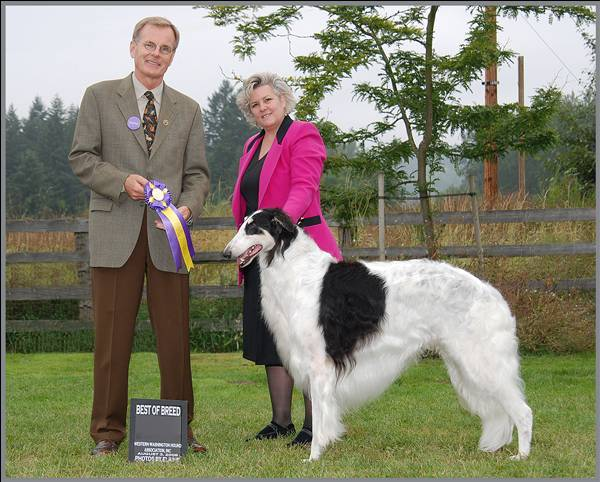 Cooper Best of Breed Bo Bengston