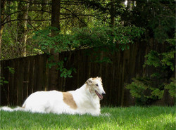 Brianna loves the grass
