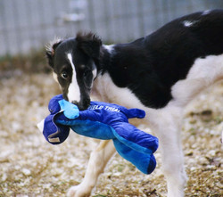 Aneese with her toy