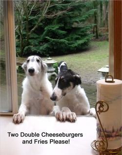 puppydrivethrough.jpg