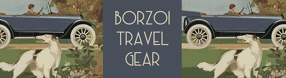 TravelGearWebsite_edited.png