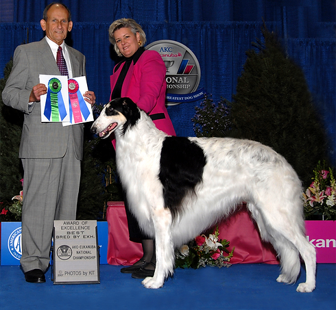 Cooper Eukanuba Best BBE Award of Excell
