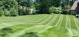 lawn-lines-2.jpg