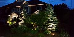 House-Lights.jpg