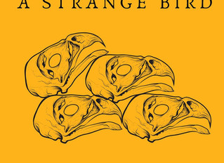 "A Strange Bird releases ""The Hollow Bones Album,' recorded at Shady Pines Studio!"