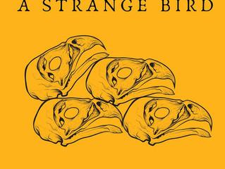 "A Strange Bird releases ""The Hollow Bones Album,' recorded at Shady Pines Studio!"