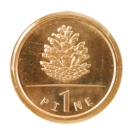 PINECOIN.png