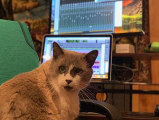 Django's doing the editing tonight.