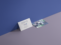 Business-Card-Branding-Mockup-sara2.png