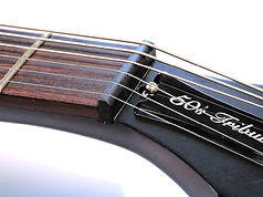 Tone Ninja Guitar Nut