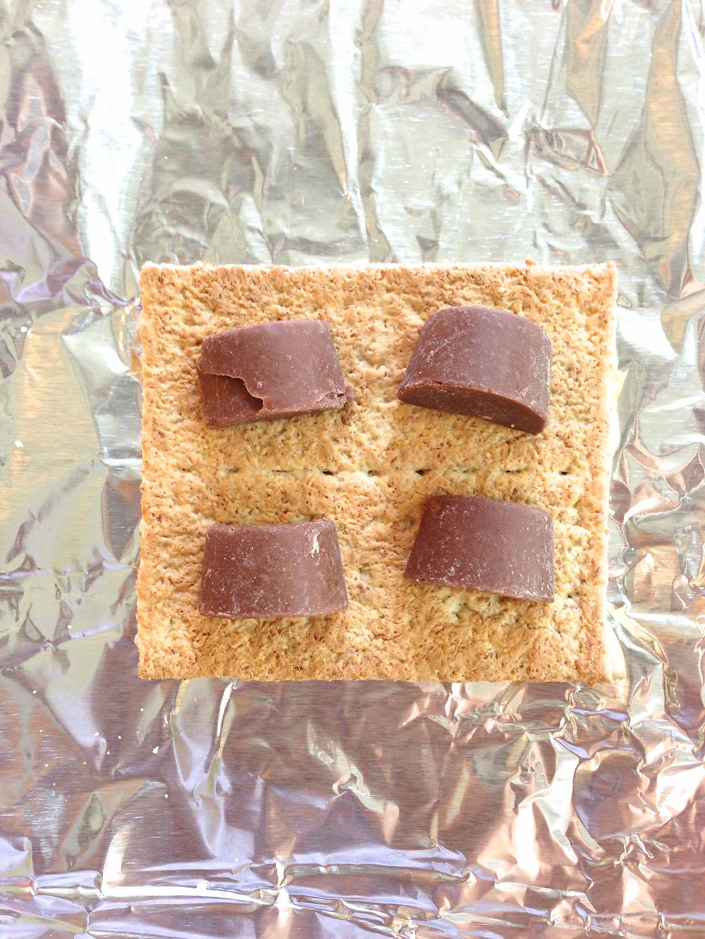 Grilled Rolo Smores c2014 TRC 2.jpg