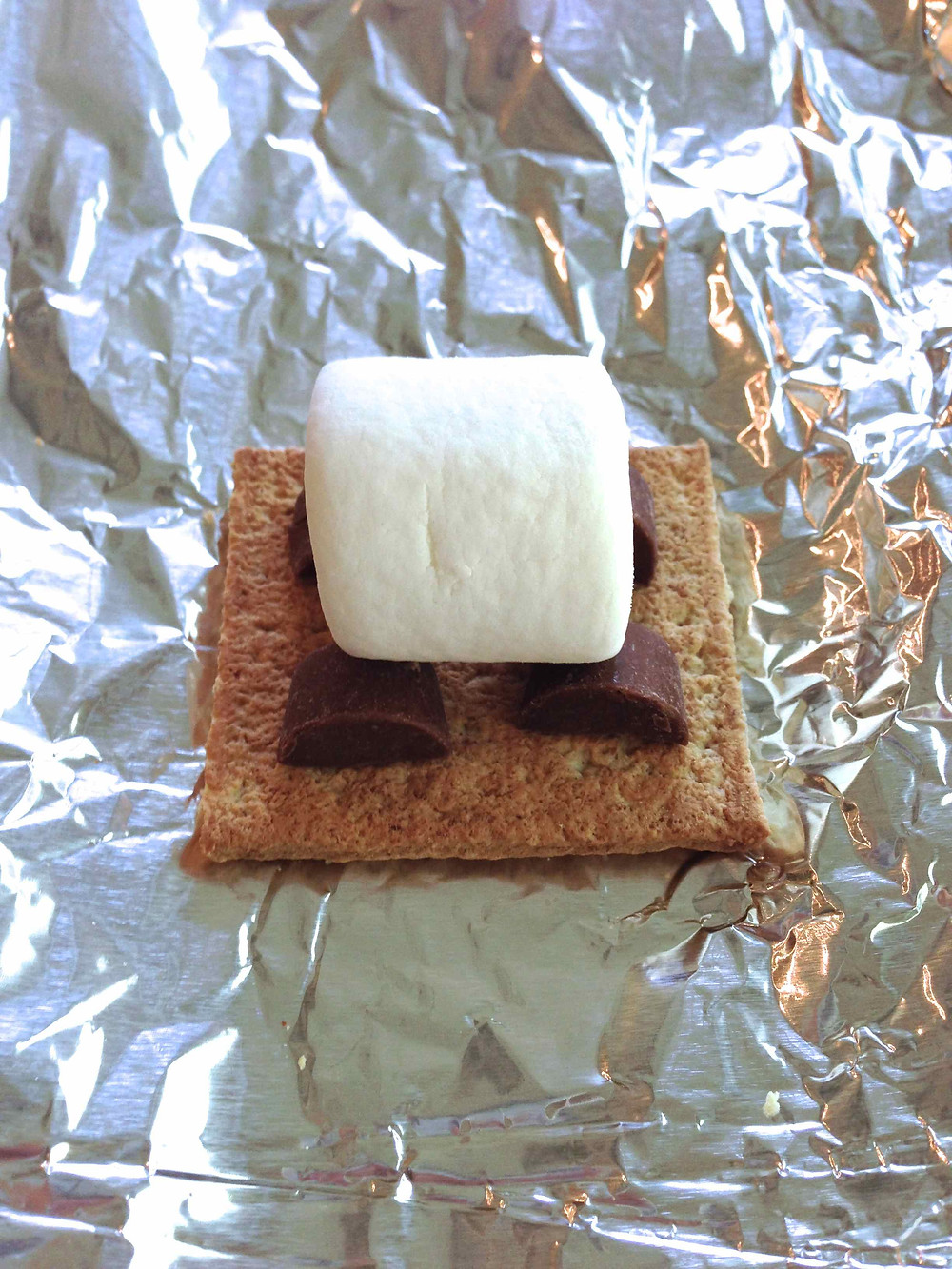 Grilled Rolo Smores c2014 TRC 3.jpg