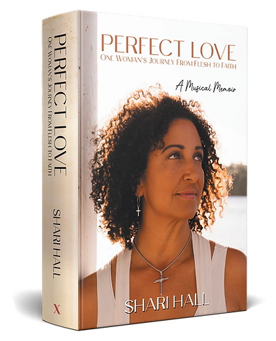 PERFECT LOVE 3D Book Cover