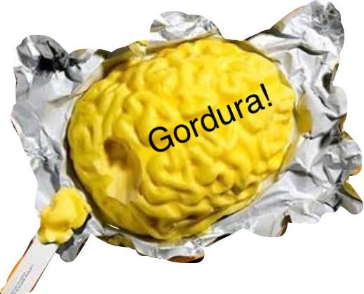 Gordura e o cérebro