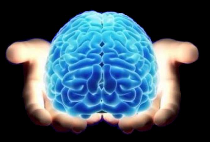 Oxcarbazepina e epilepsia