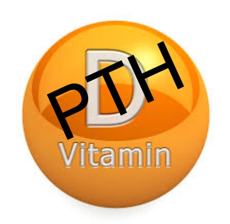 PTH e vitamina D