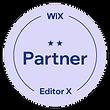 Pioneer Wix Partner Badge.png