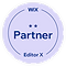 Pioneer Wix Partner Badge.png