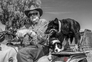 lifestyle-country-side-farmer-dogs.jpg