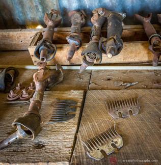 lifestyle-sheep-shearer-tools.jpg