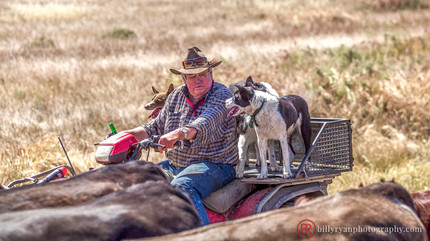 farmer-outback-editorial.jpg