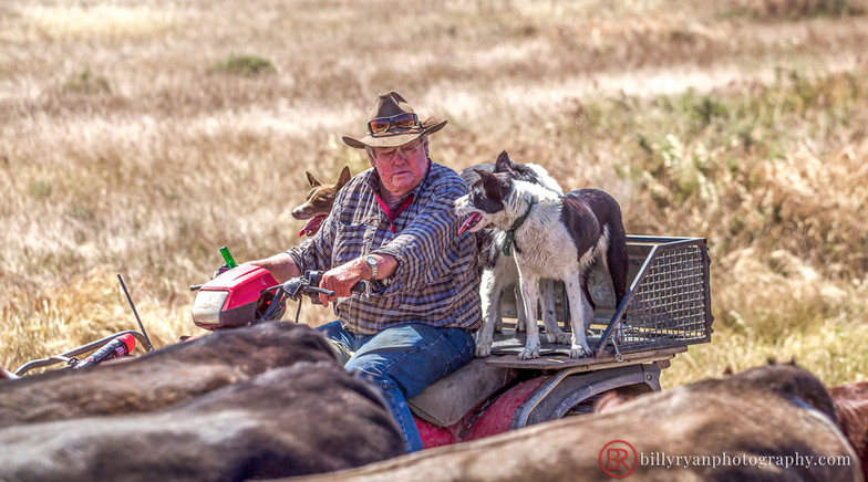 farmer-outback-editorial.jpg