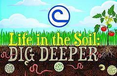 2019 NACD Soil Stewardship theme.jpg