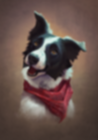 Collie_PetPortrait_SUBMIT.png