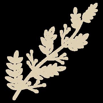 Leaf design.png