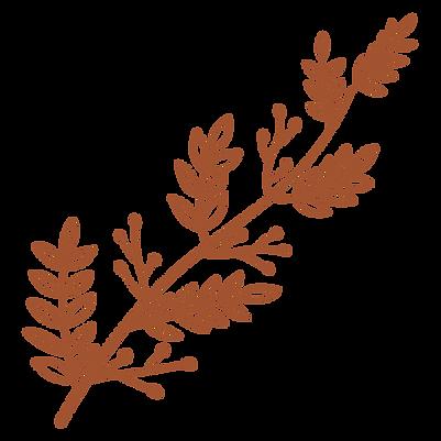 Leaf design 3.png