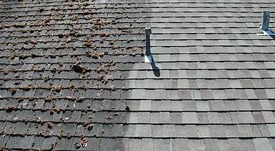 soft-washing-an-asphalt-roof.webp