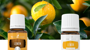 Lemon and Lemon Vitality Essential Oils: Young Living Training and Education