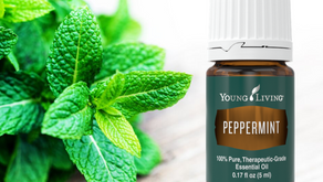 PEPPERMINT! Everything you need to know about the essential oil: Young Living Training and Education